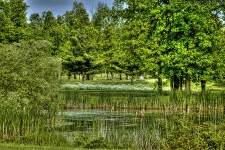 Golf scenery 25