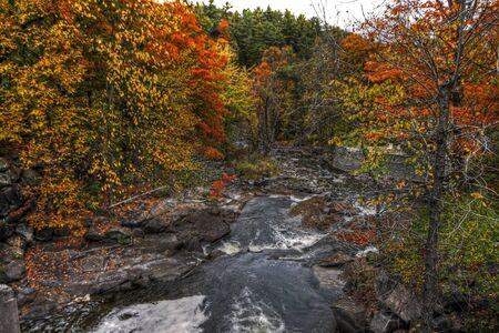 Fall forest and river landscape 06
