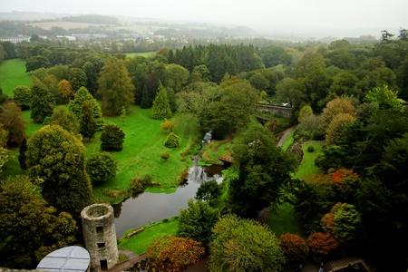 Blarney garden 98 photo