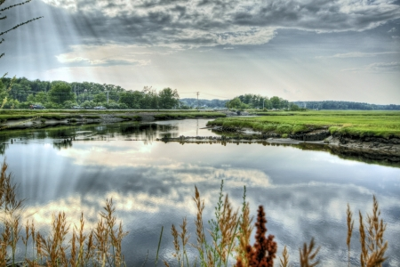 salt marsh: Scarborough marsh 40