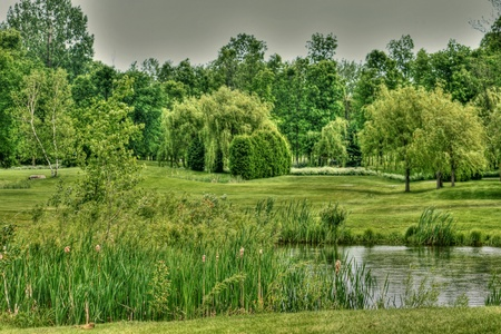 Golf scenery  Stock Photo