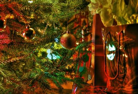 Under the tree   photo