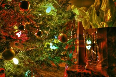 Under the tree 64 photo