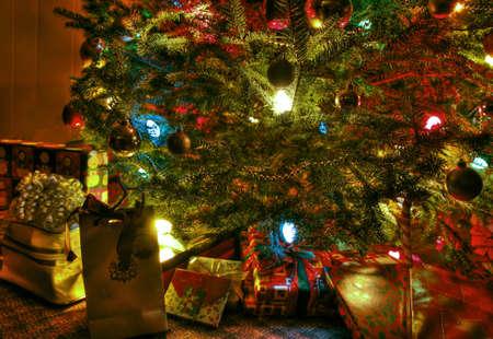 Under the tree 65 photo
