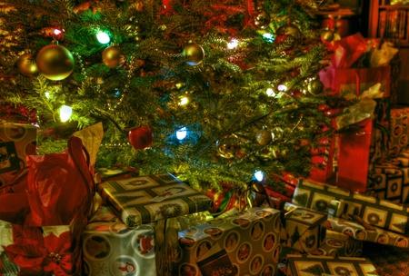 Under the tree 21 photo