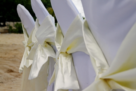 wedding chairs: Tropical wedding chairs 85