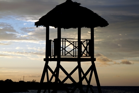 Tropical watchtower