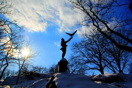 Central Park winter 141 photo