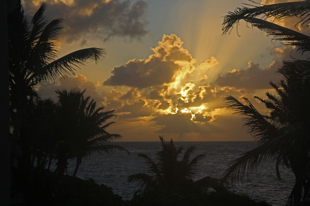 Early morning sunrise in Antigua with palm trees and clouds Stock Photo