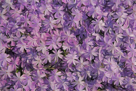 Purple artistic phlox designed as a background Stock Photo