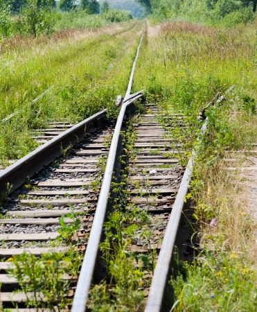 The old rusty railway grassed