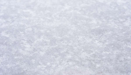 background of pure white snow and the snowflakes photo