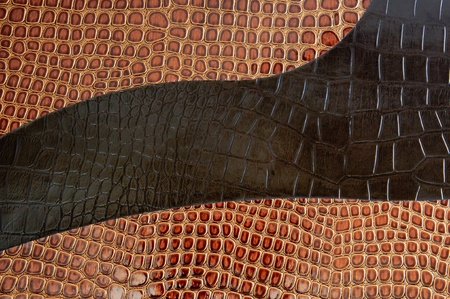 a golden brown background of the crocodile photo