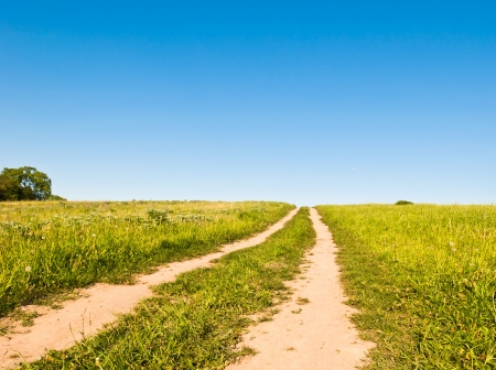 dirt road: dirt road in a field against a blue sky Stock Photo