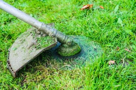 lawnmower running on green grass photo