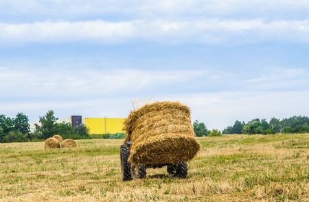 tractor removes the hay in the field photo