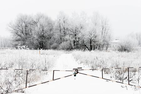 winter landscape gate closed on the lock with chain  photo