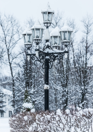 old lamppost in a snowy park in winter photo
