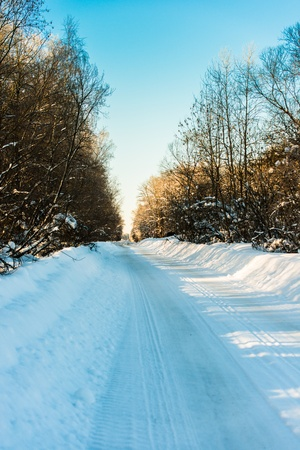 country road passing through the winter woods photo