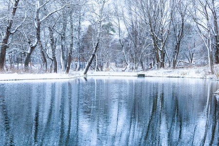 landscape is not still pond with snowy shore Stock Photo - 24433539