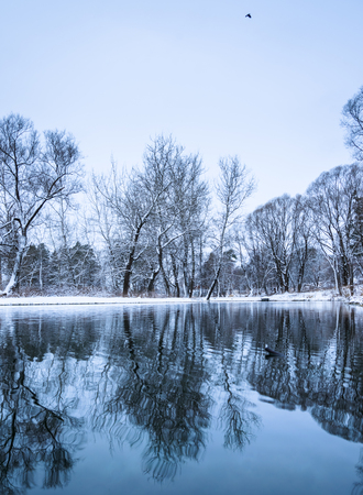 landscape is not still pond with snowy shore Stock Photo - 24433545