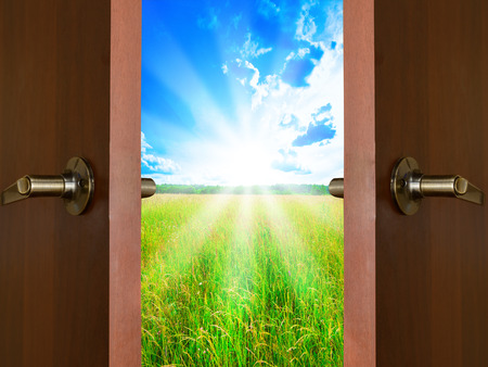 open door with a view of green meadow illuminated by bright sunshine Standard-Bild