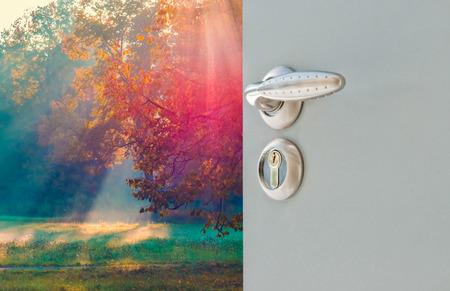 Ouvrez la poignée de la porte et touches véranda donnant sur la forêt et le soleil Banque d'images - 51454292