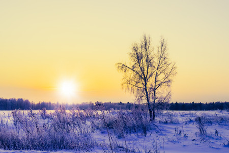 wintery day: landscape is not still pond with snowy shore Stock Photo