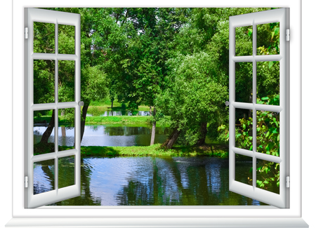 uitzicht vanuit het raam in het waterlichaam en de boom in de zomer