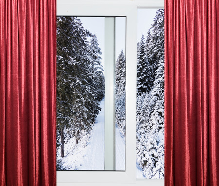 view from the window of a winter forest Stock Photo