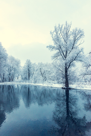 landscape is not still pond with snowy shore Stock Photo