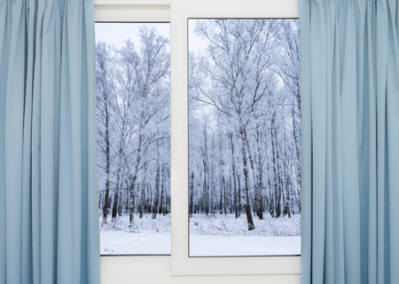 jalousie: view from the window of a winter forest Stock Photo