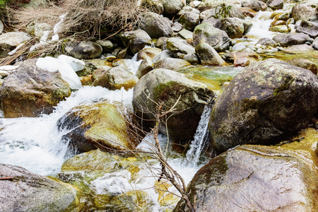 fast mountain stream among the stones  spring a thaw in the forest