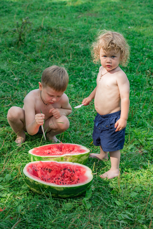 Two little brothers eat watermelon in nature photo