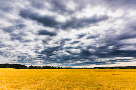cleaned: oblique field landscape with dark rain clouds sky Stock Photo