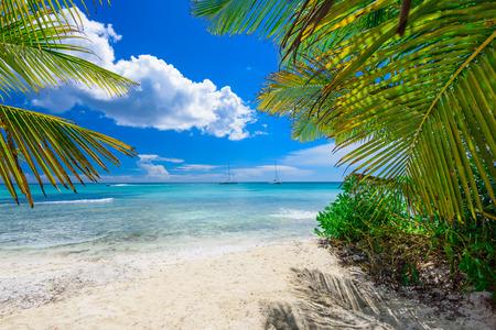dominican: Group deck chairs under an umbrella on a sandy beach sea Stock Photo