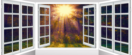 beautiful view from the window to nature picturesquely Фото со стока