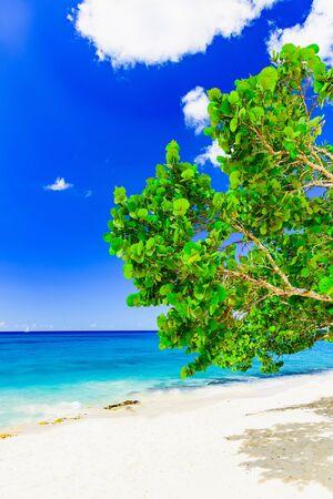 sandy beach and calm blue Caribbean sea surf