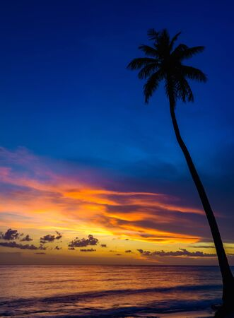 beautiful calm color sunset of the Caribbean in fine weather