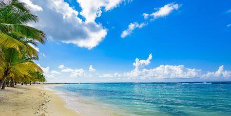 plage tropicale paradisiaque