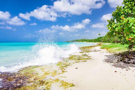 splashing waves crashing on the rocky shore at dawn sun 免版税图像