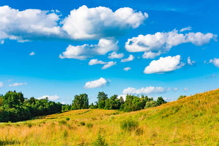grassland landscape with the sky in the spring, sunny day