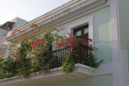 Some Flowers blooming on old classic verandas Stock Photo - 826400