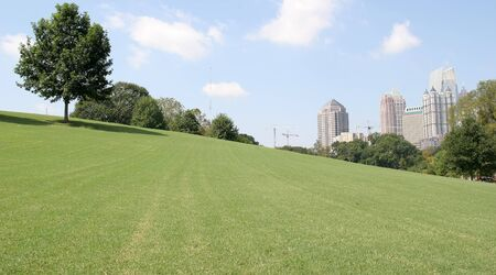 City skyline over a grassy hill and blue sky photo
