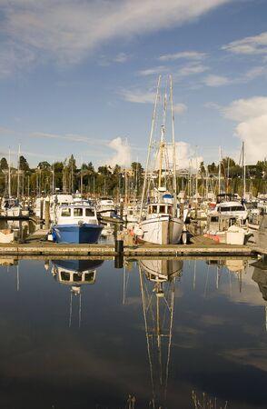 Colorful yachts at the dock at a marina photo