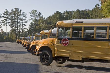 flashers: Many school buses lined up in a parking lot
