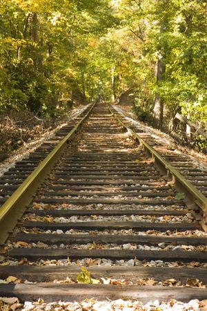 railroad track: A straight run of railroad tracks disappearing into the forest