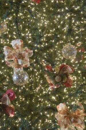 A nice christmas tree decorated with little white twinkly lights Stock Photo - 2347096