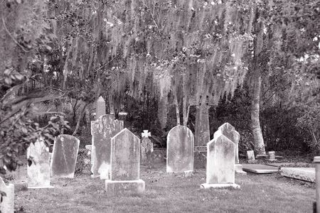 An old cemetery on a grassy lawn with oak trees and spanish moss Stock Photo