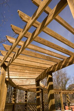 curving: A wooden trellis curving over a walk in the park